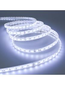 strip striscia led bobina 5 metri ip65 72w 24v impermeabile 300smd 5050 luce fredda 5400lumen 1555