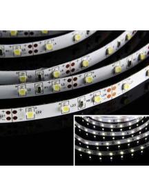 strip led bobina 5 metri  striscia 12v  24w  1800 lumen   300smd3528 ip20 luce fredda   0569